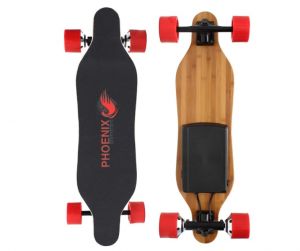 Alouette Phoenix Ryders Electric Skateboard